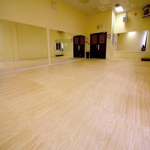 Aerobic Amp Multi Room Flooring Zebra Mats Canada