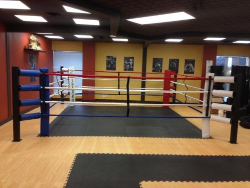Floor Mount Boxing Rings Zebra Mats Canada