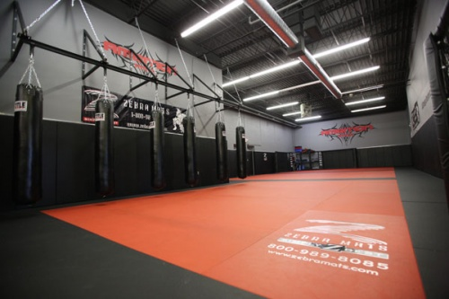 Pro Series Mma Mats For Grappling Amp Training Zebra Mats