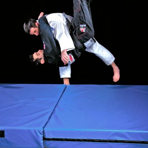 Landing Mats For Throwing Amp Gymnastics Zebra Mats Canada