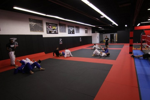 Mma Mats For Grappling Wrestling Amp Training Zebra Mats